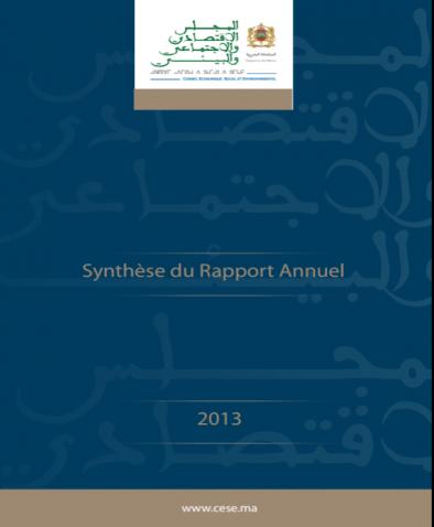 Synthèse du Rapport Annuel du CESE sur la Situation Economique, Sociale et Environnementale- 2013